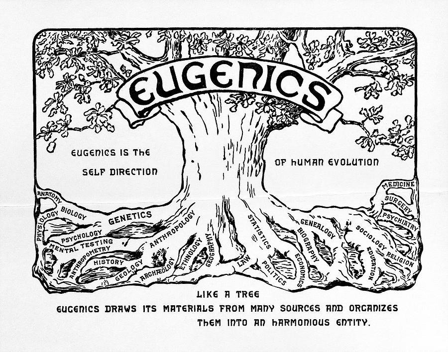 Logo Photograph - International Eugenics Logo by American Philosophical Society