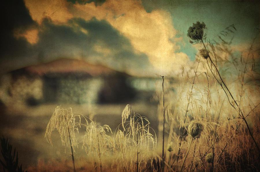 Seascape Photograph - Into Deep Sleep by Taylan Apukovska
