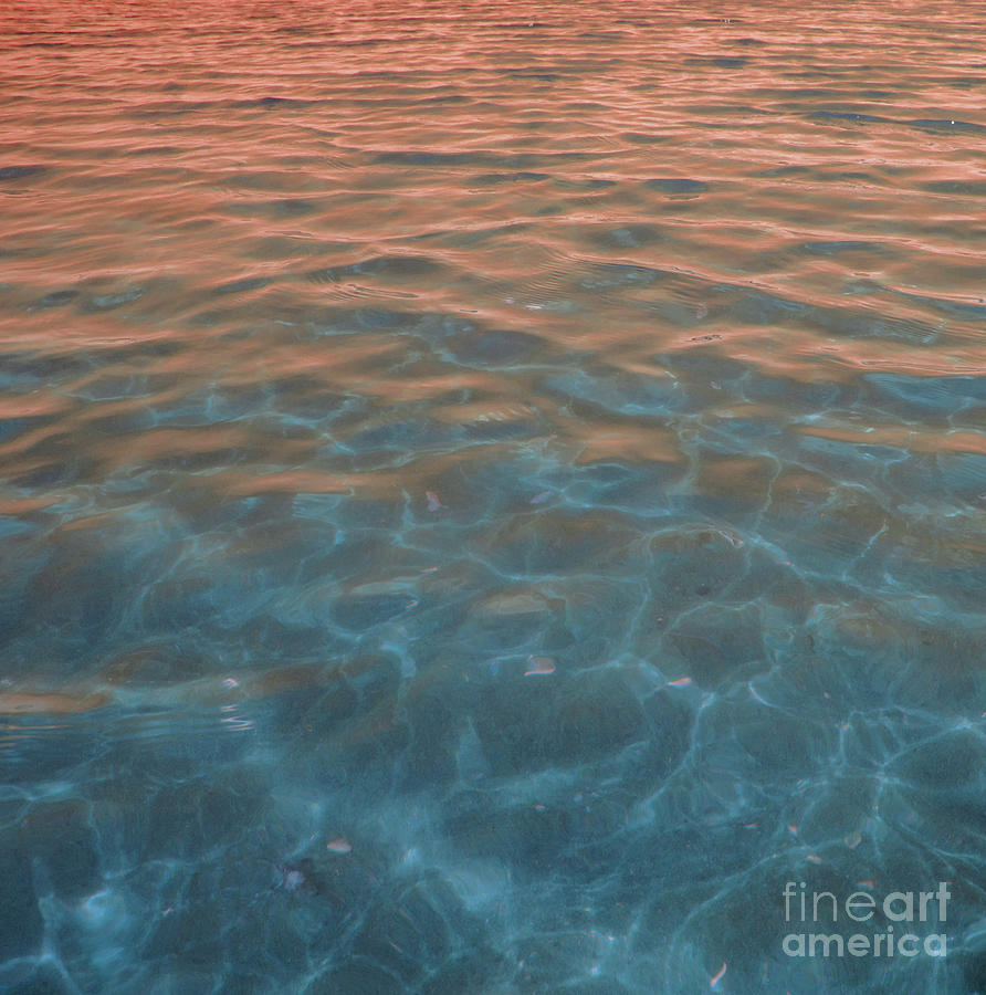 Sunset Photograph - Into The Blue At Sunset by Cindy Lee Longhini