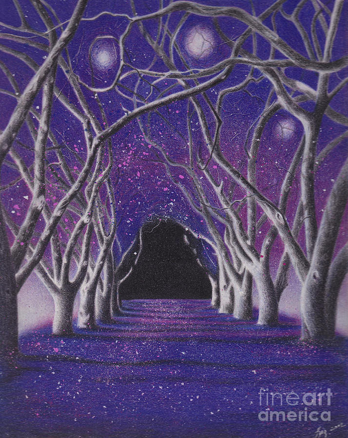 Pencil Painting - Into The Dark by Elizabeth Dobbs