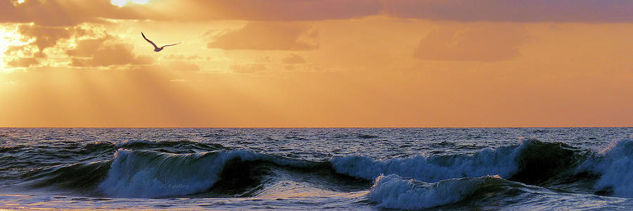 Atlantic Photograph - Into The Light by JC Findley