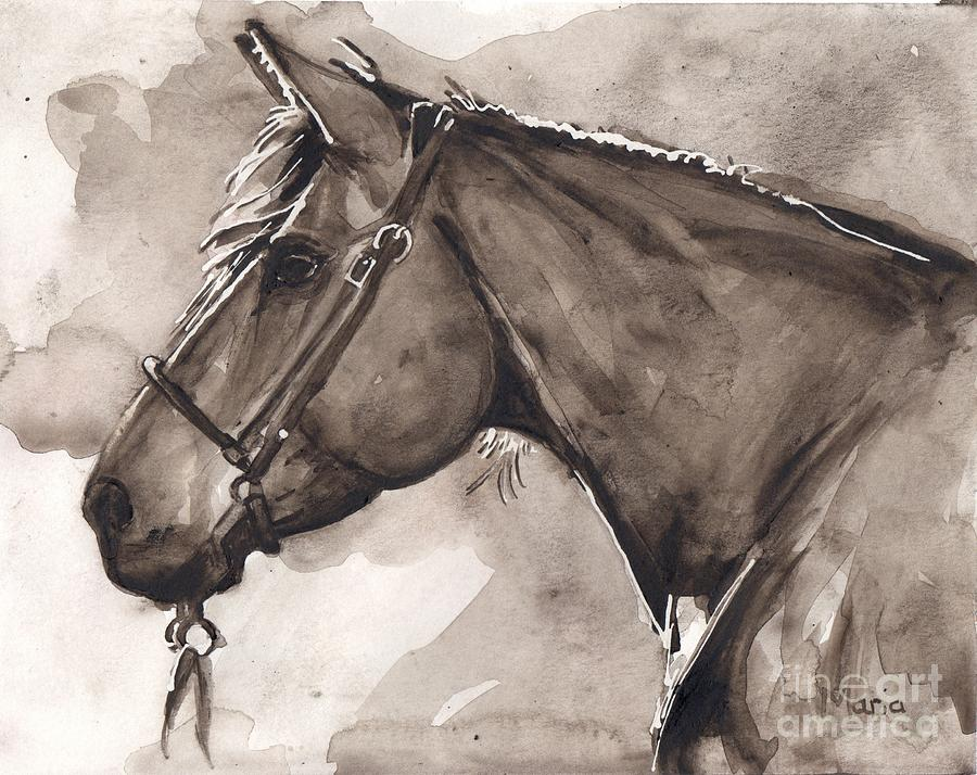 Horse Watercolor Painting - Into The Light by Marias Watercolor