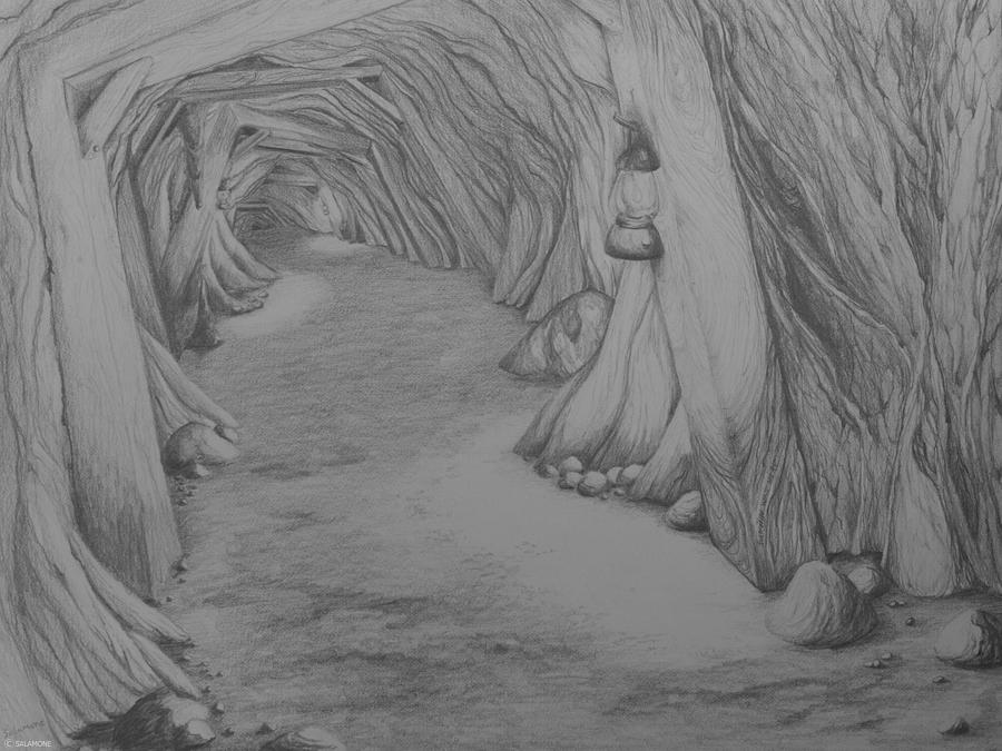 Into The Mountain Drawing by Brenda Salamone