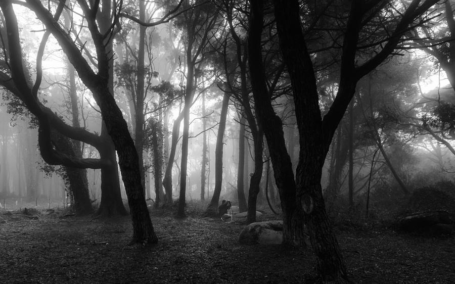 Mystic Photograph - Into The Mystic by Marco Oliveira