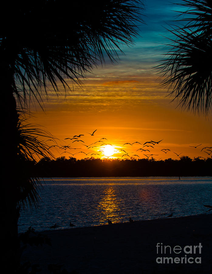 Port Charlotte Photograph - Into The Sunset by Anne Kitzman