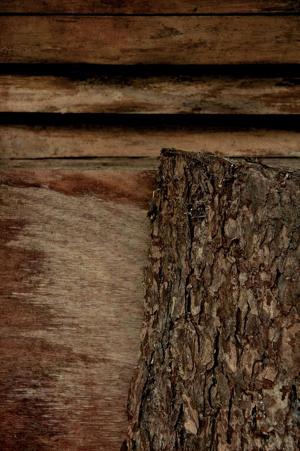 Wood Photograph - Into The Swell by Odd Jeppesen