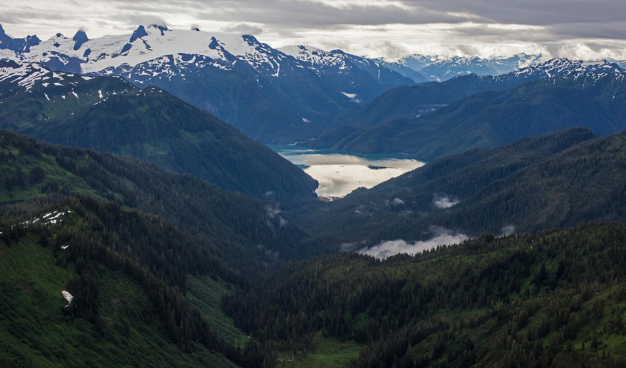 Alaska Photograph - Into The Wild by Mike Reid