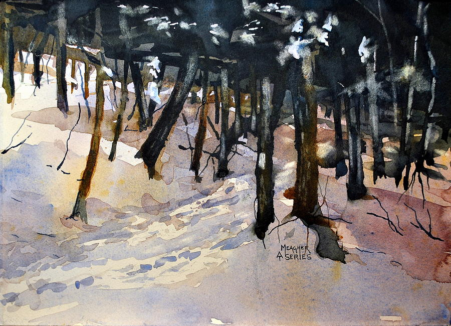 Appalachian Trail Painting - Into The Woods by Spencer Meagher