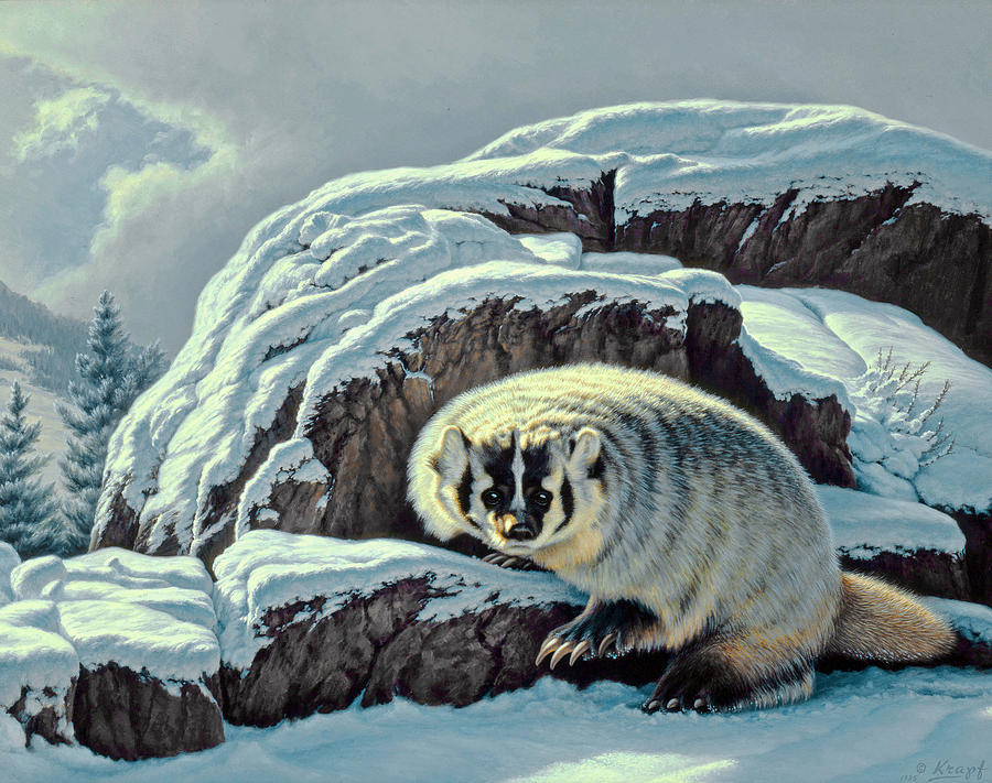 Wildlife Painting - Intrusion -  Badger by Paul Krapf