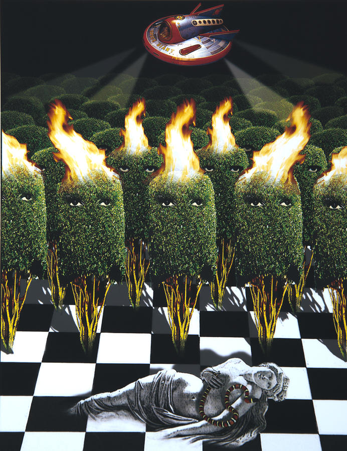 Aliens Digital Art - Invasion Of The Alien Bushes by Larry Butterworth