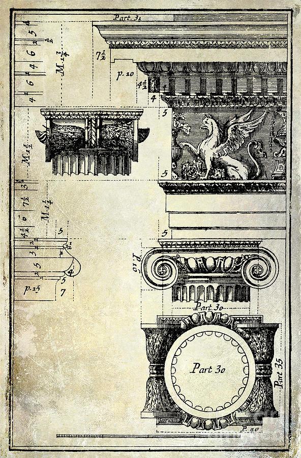 Ionic Capital Drawing - Ionic Capitol by Jon Neidert