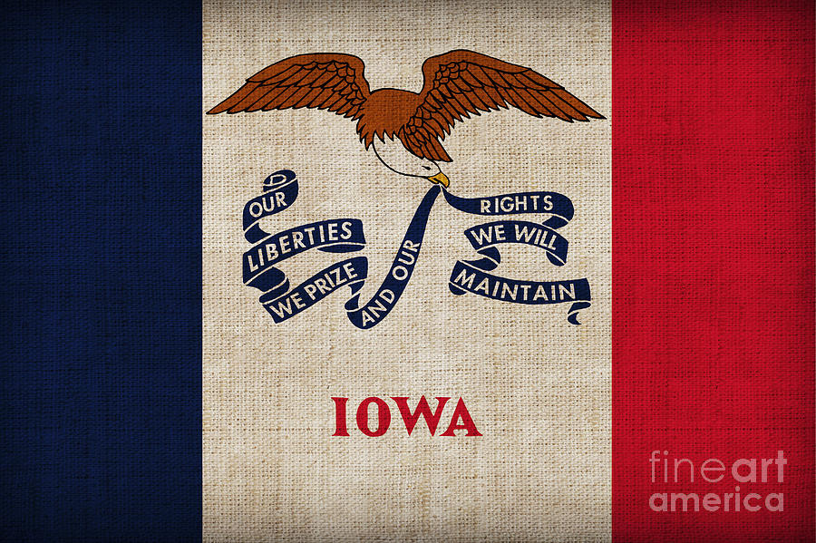 Iowa Painting - Iowa State Flag by Pixel Chimp