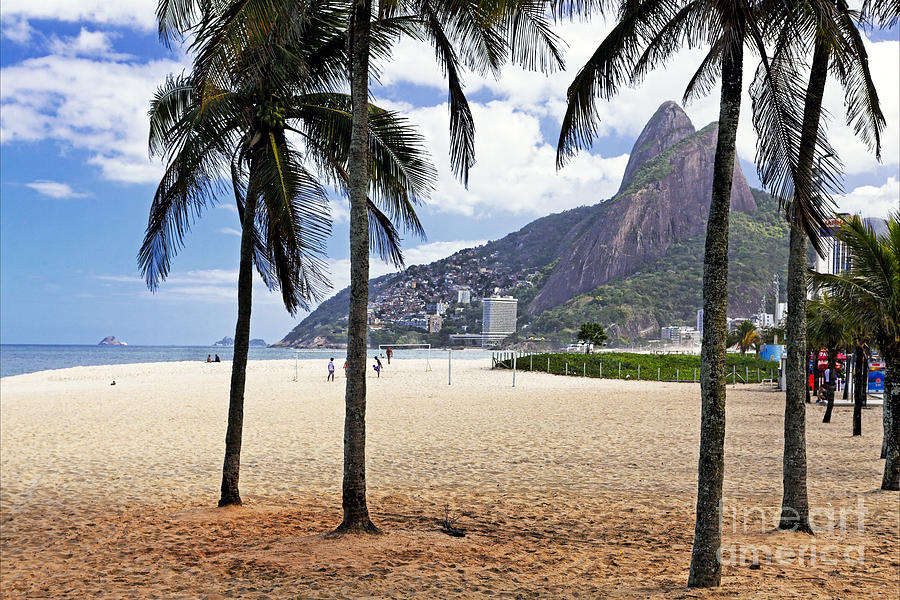 Beach Photograph - Ipanema Beach Palm Trees by George Oze