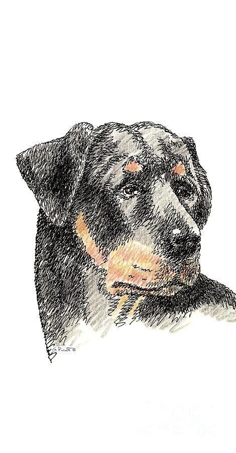 iPhone-Case-Rottweiler by Gordon Punt