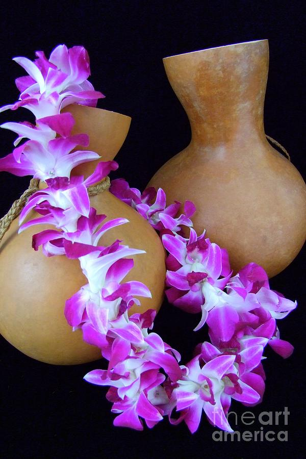 Hawaii Culture Photograph - Ipu And Orchid Lei by Mary Deal