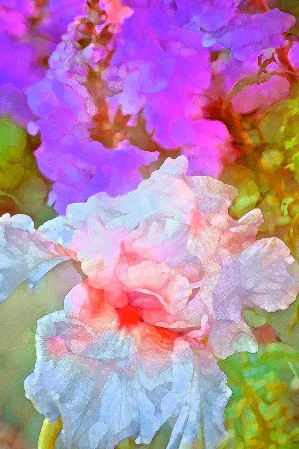 Floral Photograph - Iris 60 by Pamela Cooper
