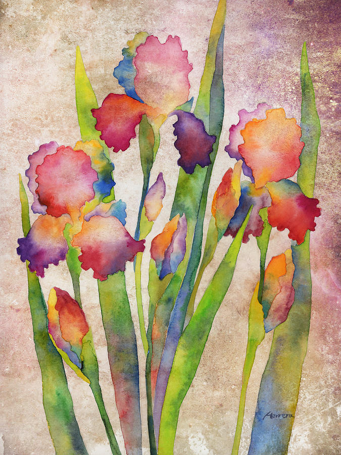 Iris Elegance On Pink Painting