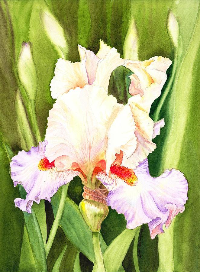 Iris Painting - Iris Flower Dancing Petals by Irina Sztukowski