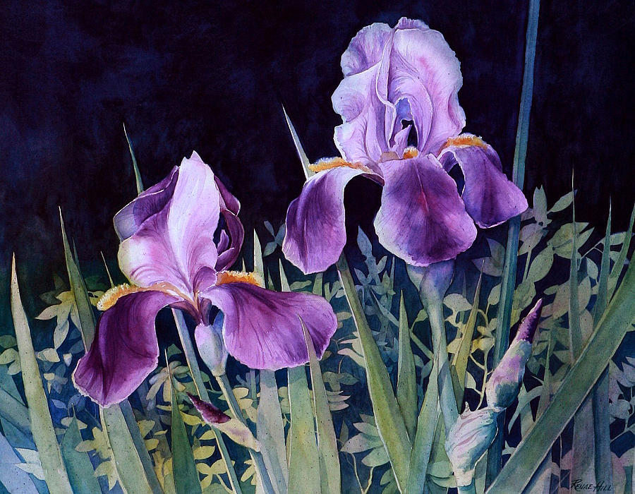 Iris Painting By Renae Hill