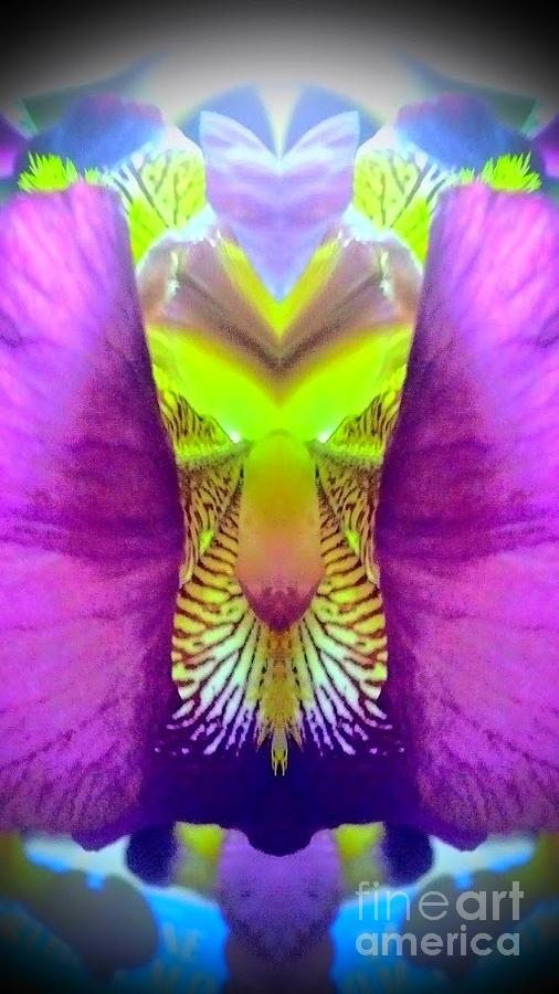 Abstract Photograph - Iris Spirit by Karen Newell