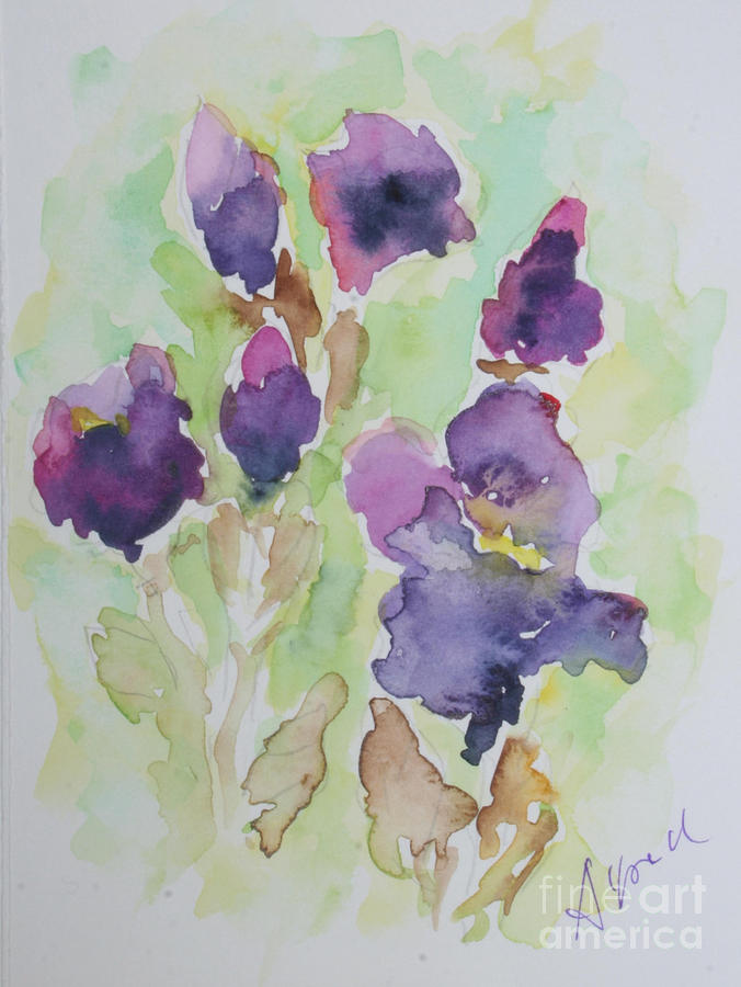 Watercolour Painting - Irises by Almo M
