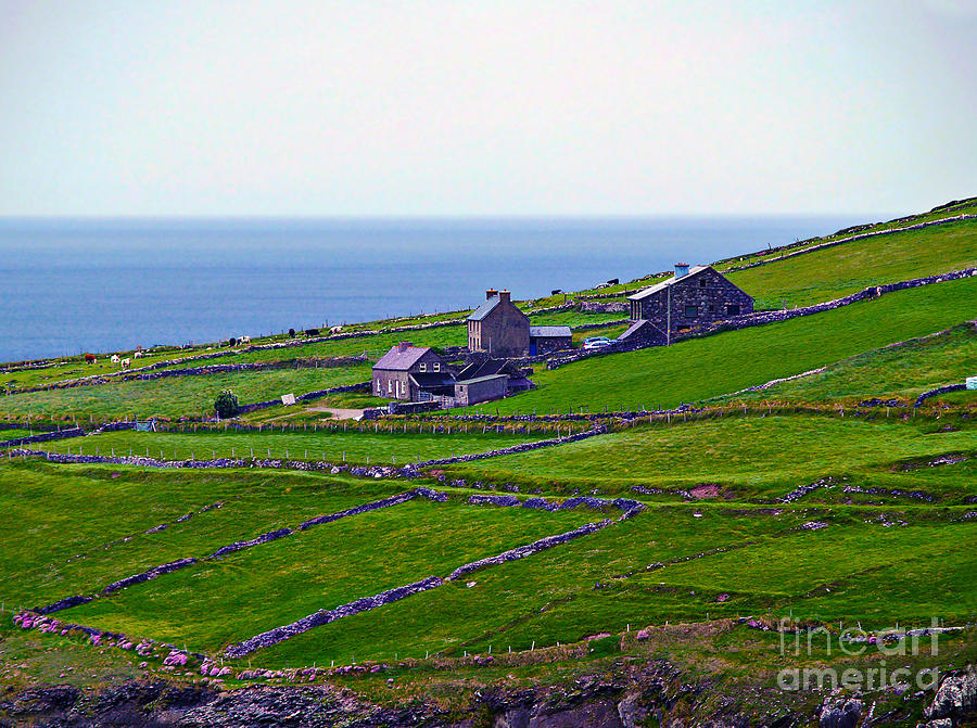 Irish Farm 1 by Patricia Griffin Brett