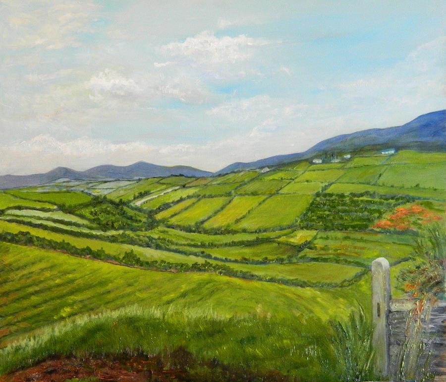 e05d6b609 Irish Fields - Landscape Painting by Sandra Nardone