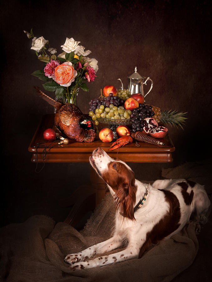 Still Life Photograph - Irish Red And White Setter With Fruits... by Tanya Kozlovsky