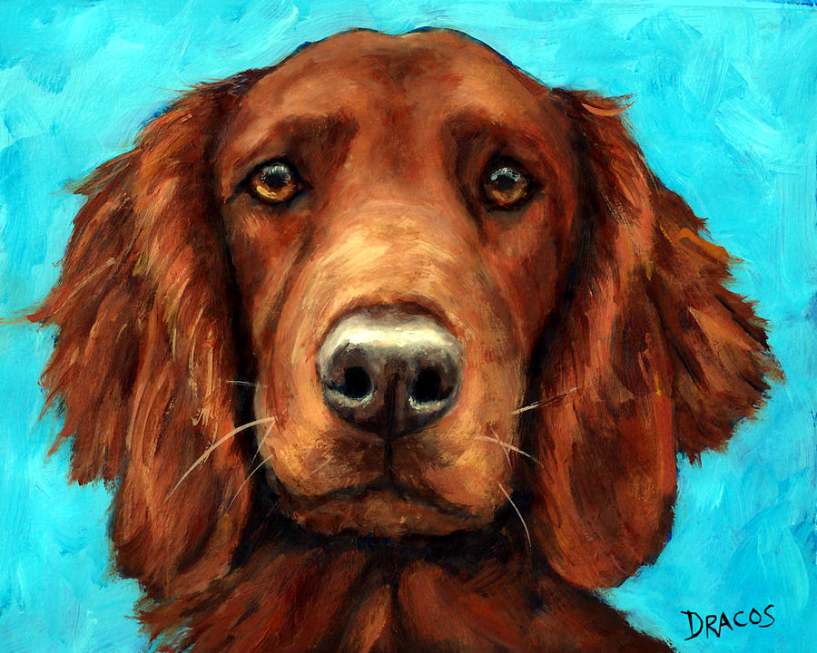 Irish Setter Painting - Irish Setter Portrait by Dottie Dracos