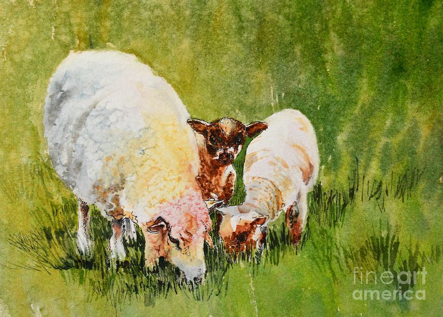 Ireland Painting - Irish_curiosity by Nancy Newman
