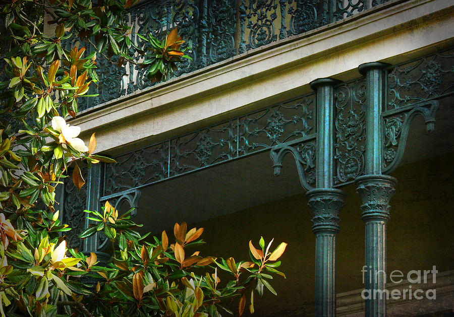 New Orleans Photograph - Iron Detail With Magnolia Tree by Jeanne  Woods