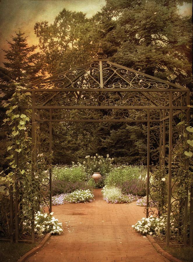 Nature Photograph - Iron Entrance by Jessica Jenney