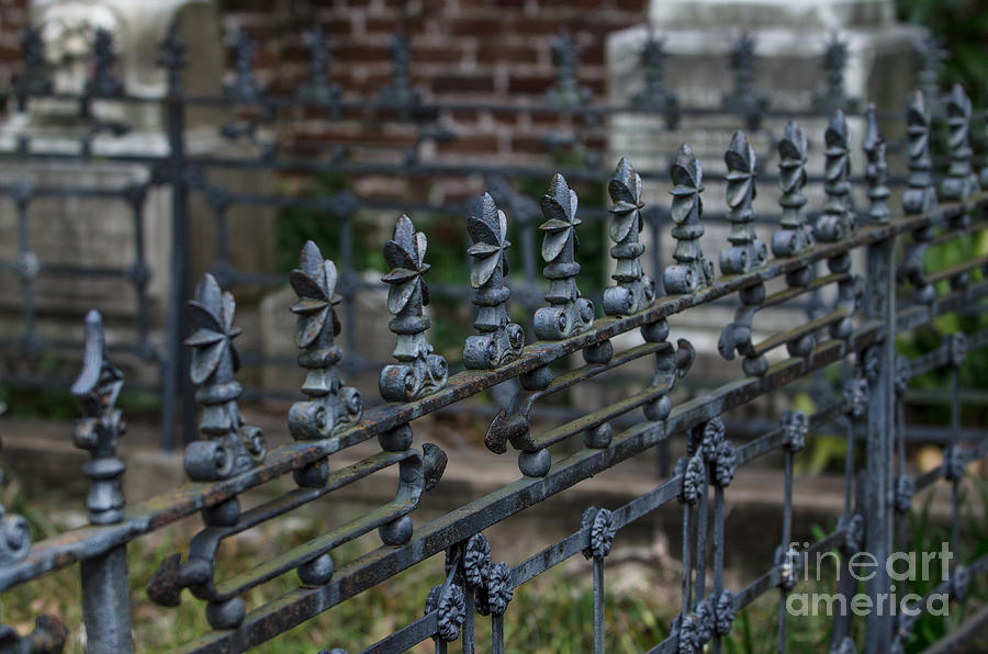 Graveyard Photograph - Iron Graveyard by Dale Powell