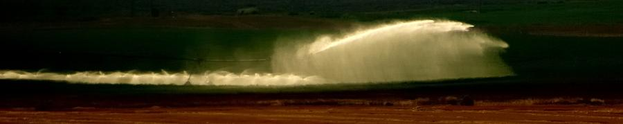 Irrigation 16682 Photograph