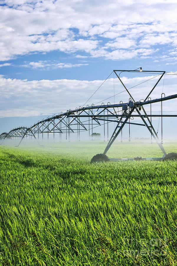 Irrigation Photograph - Irrigation Equipment On Farm Field by Elena Elisseeva