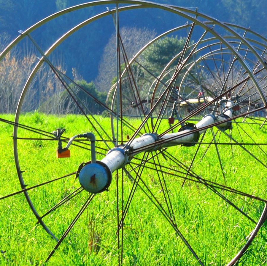 Irrigation Line 22538 2 Photograph