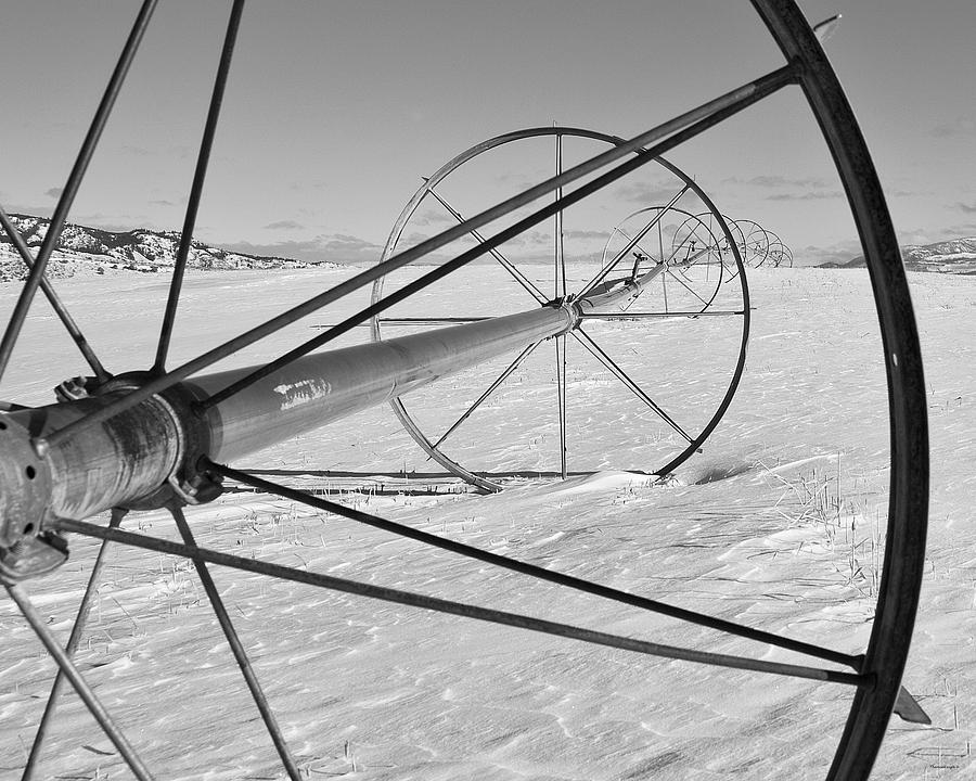 Farm Photograph - Irrigation Pipe In Winter by Theresa Tahara