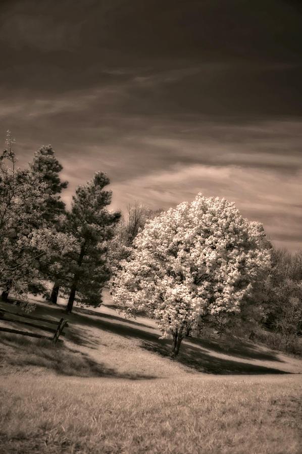 Landscape Photograph - ...is But A Dream by Steve Harrington