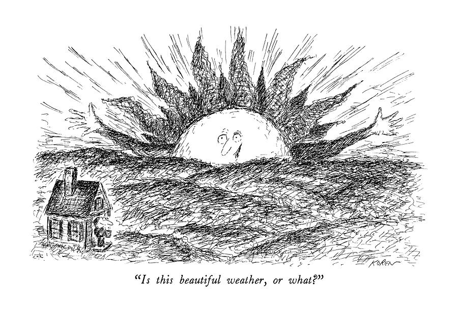 Is This Beautiful Weather Drawing by Edward Koren