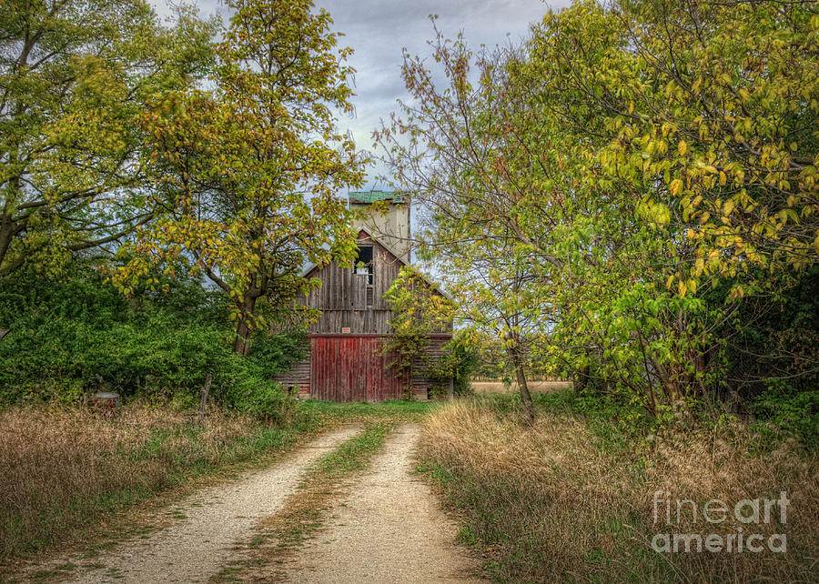 Isaacs Old Barn by Pamela Baker