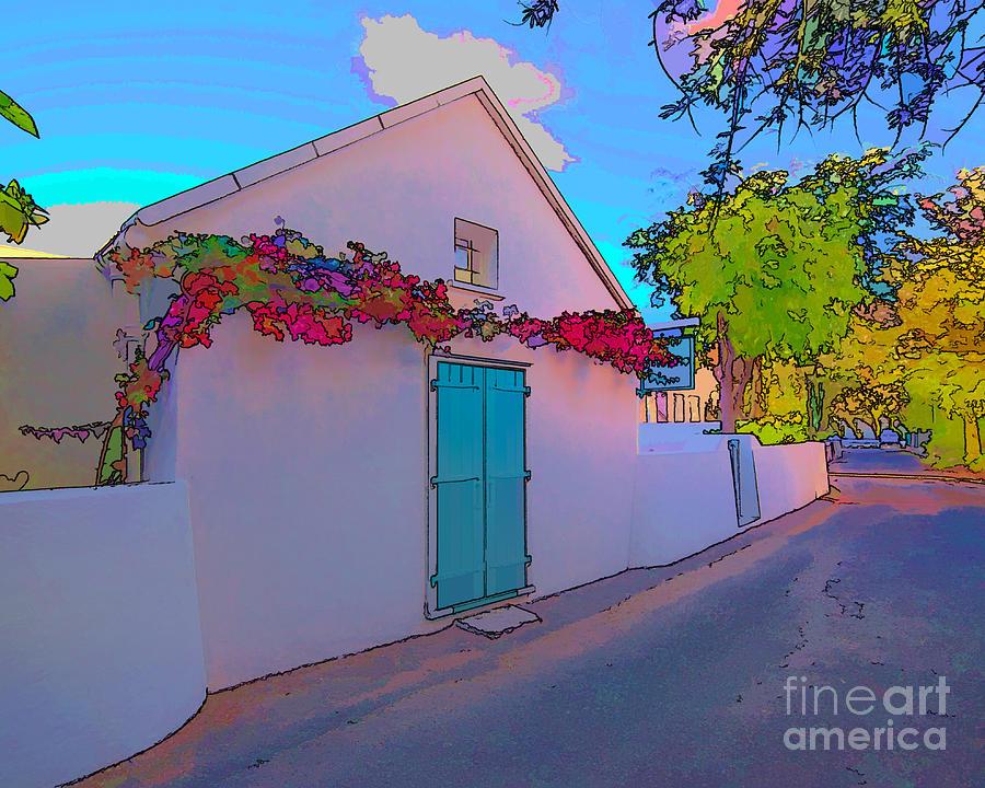 Home Photograph - Island Home by Carolina Mendez