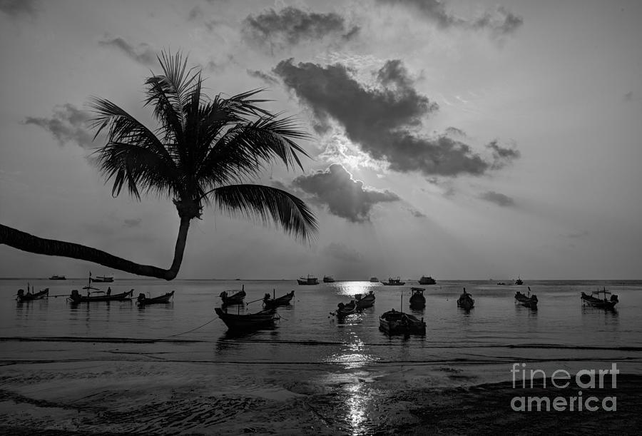 B&w Photograph - Island Sunset by Alex Dudley