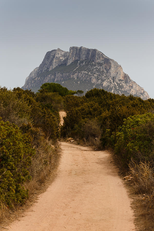 Sardinia Photograph - Isola di Tavolara by Paul Indigo