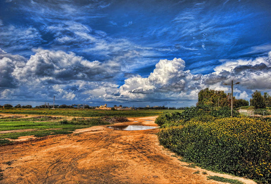 Landscape Photograph - Israel End Of  Spring Season  by Ron Shoshani