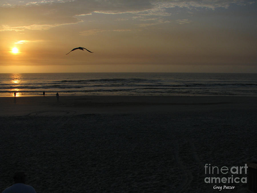 Florida Sunrise Photograph - It Starts by Greg Patzer