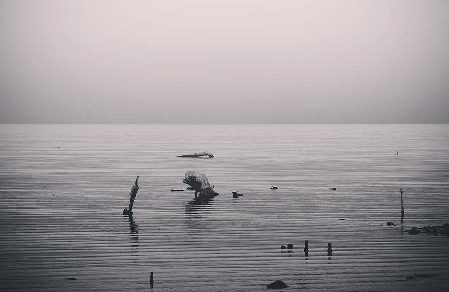Salton Sea Photograph - It Was Lonely There by Laurie Search