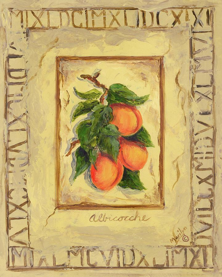 Europe Painting - Italian Fruit Apricots by Marilyn Dunlap