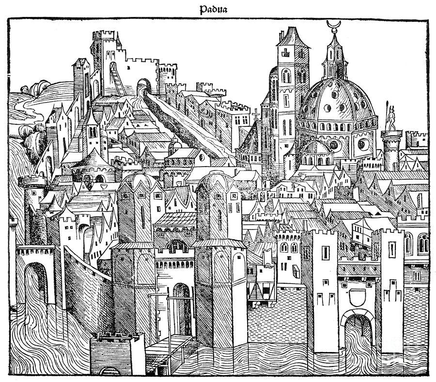 1493 Drawing - Italy - Padua 1493 by Granger
