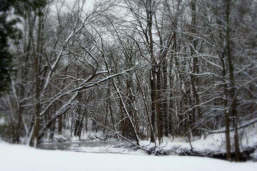 Winter Photograph - Its A Beautiful Winter by Kay Novy
