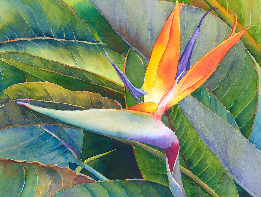 Bird Of Paradise Painting - Its A Bird by Judy Mercer